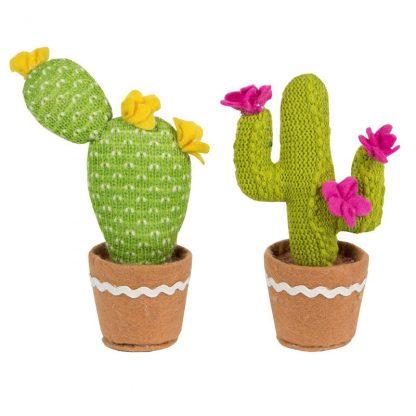 plante verte décoration intérieur cadeau
