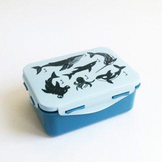lunch box ecole sport biscuit pique-nique poisson baleine requin marteau narval ocean