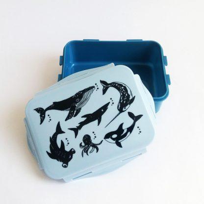 boite gouter quatreheures enfant kid mammiferes marins